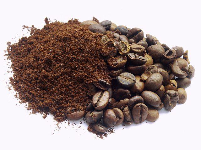 El café podría utilizarse como sustituto de la gasolina