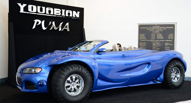 Youabian-Puma